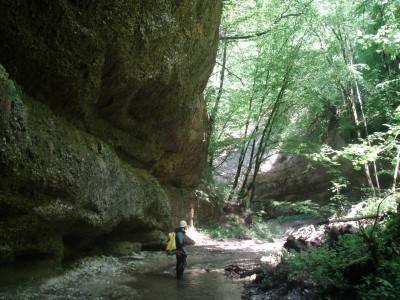 Ruisseau de l'Aigueblanche