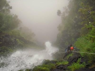 Canyon de Jungle Rain