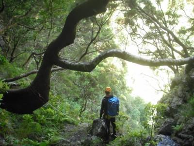 Canyon du Retour