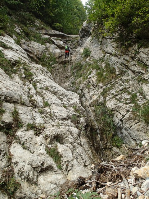 Ruisseau de la Gorge