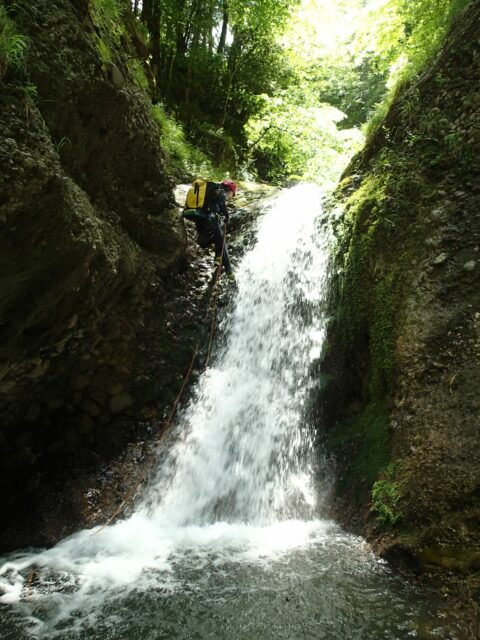 Ruisseau de Chorolant (aval)