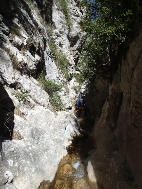 Ravin de Balène