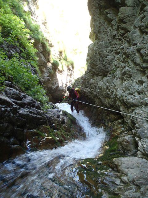 Ravin de Valdemars