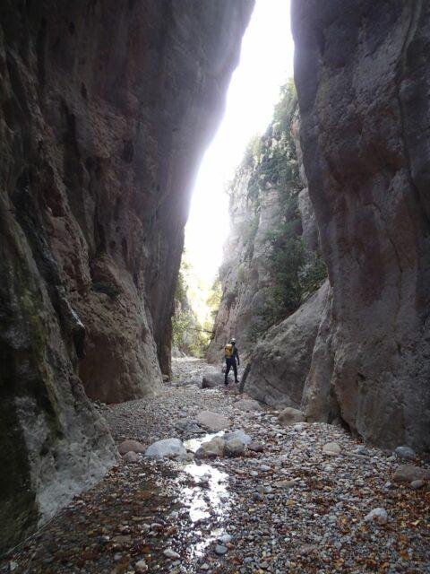 Barranc del Bosc de Serradell