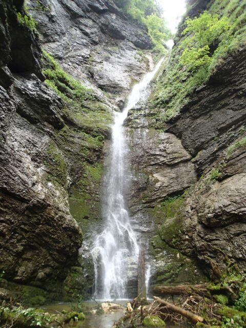 Ruisseau du Sierroz (partie amont)