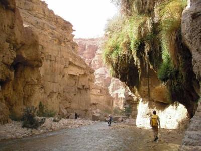 Wadi Hasa (inférieur)