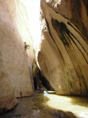 Wadi Hasa (supérieur)