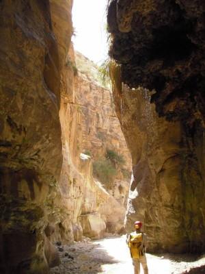 Wadi Ibn Hammad